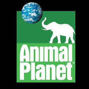 animalplanet_tile.jpg
